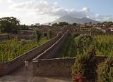 Ancient Pompeii and Vesuvius