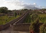 Ancient Pompeii and Vesuvius