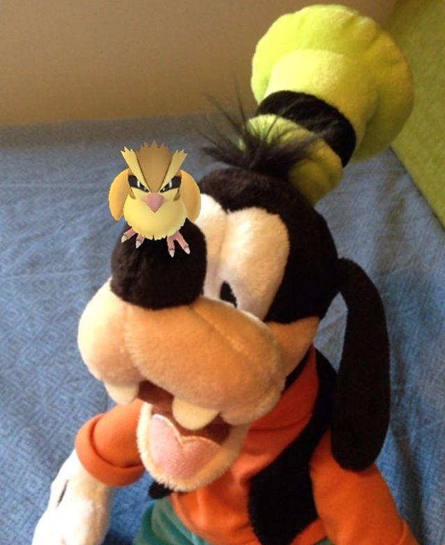 il mio eroe pippo - goofy goof - pippo de pippis - pokemon go - pidgey