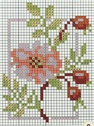 23473161_2047986235211604_2582324126110954688_n.jpg (323×431)