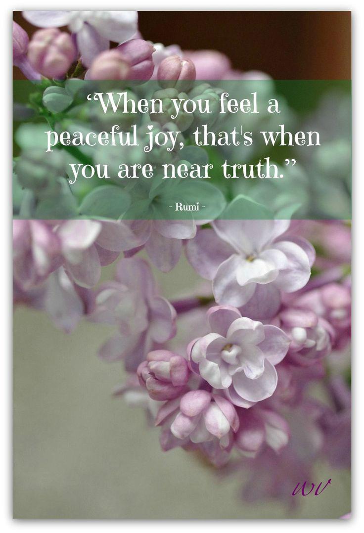 d8794f05890c4f1ed8ee332e04bd70a0--spiritual-inspiration-inspiration-quotes.jpg