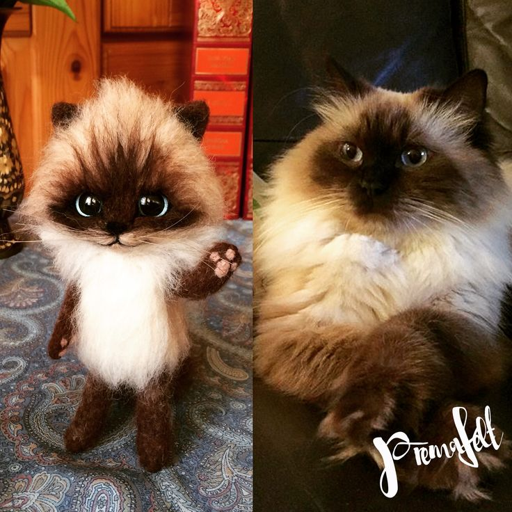 Needle felted cat, kittens, cute handmade kitten, custom orders #needlefeltedanimals #softsculpture  #handmade #fiberart #realisticanimal #catkitten #bunny #cat #bunnies #merinowool #miniaturefigurine #animalsculpture #handmadefigurine #wool #easter #valentinesday #handmadeanimal #feltdoll #happyanimals #mouse #creative #fox #needlefeltedfigurine #woodlandcreatures #giftforanimallovers  #giftfornaturelovers