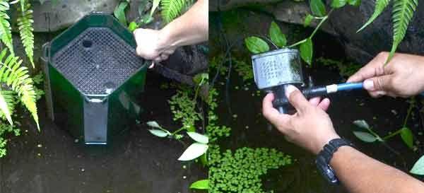 instalar un filtro para estanque
