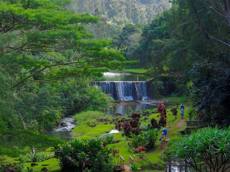 wai koa loop trail Kauai A VERY BEAUTIFUL PLACE TO HIKE TO IN KAUAI.