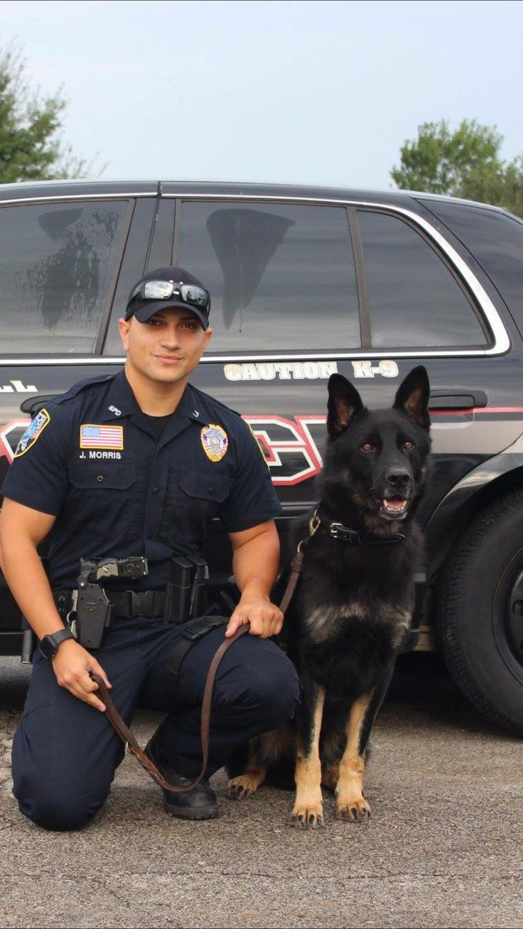 Heidi ho Military service dogs, Police dogs, Working dogs