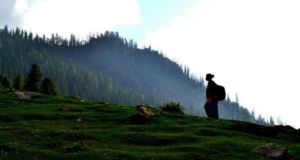 Kheer Ganga, Himachal Pradesh, India: Hot springs and the Holy River Ganges all around the dense forests gushes down the curvy paths in the Parvati valley of Kullu district.   Read 10 Lesser Known Vacation Spots in Himachal Pradesh: http://www.flarebuzz.com/2016/04/10-lesser-known-vacation-spots-in-himachal-pradesh/