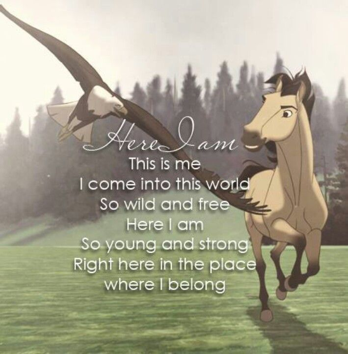 Spirit stallion of the cimeron is one of my favourite movies,it just makes so much sence and i love it! the horses are so pretty and i could wagtch that movie every day!!!