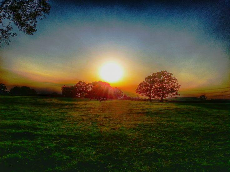 Denmead Sunset