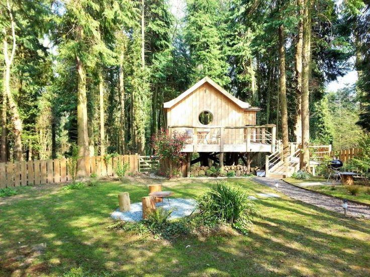 El birdhouse casa del árbol, una pequeña cabaña de madera en un ...