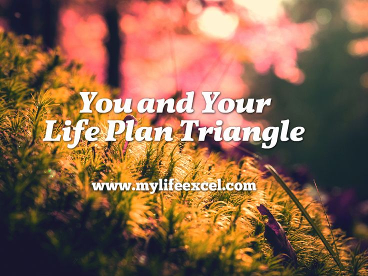 You and Your Life Plan Triangle | Intentional Excellence http://www.mylifeexcel.com/you-and-your-life-plan-triangle/ via @jabulaniapeh #LAST70DAYS Day1