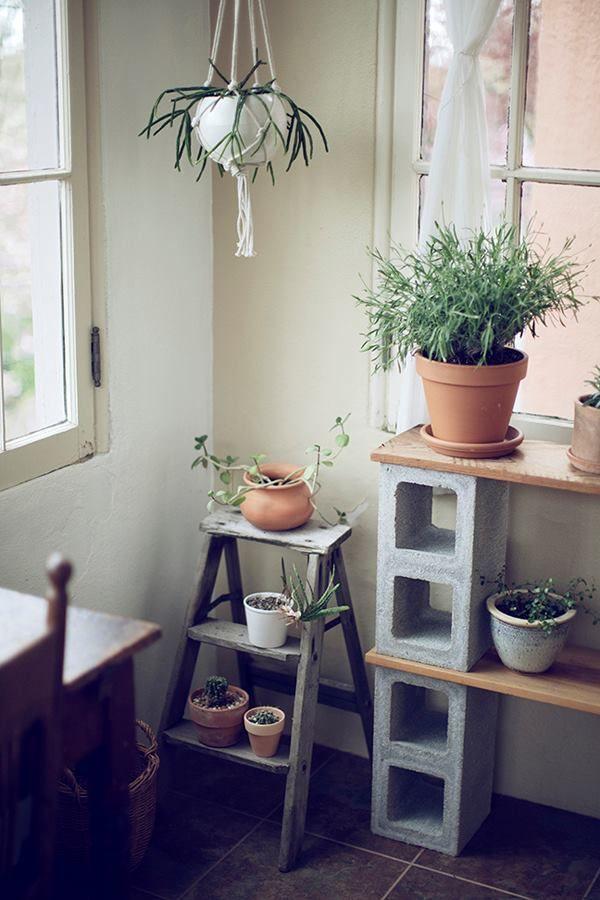 Weet jij geen plek voor je planten in huis? Zet ze op een oud laddertje of maak een rek met houten planken en betonblokken!