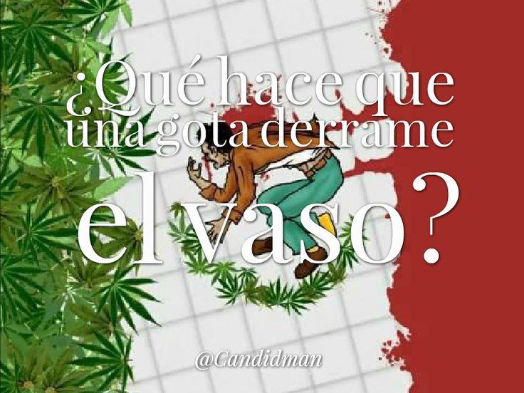 ¿Qué hace que una gota derrame el vaso? @candidman #YaMeCanse #AccionGlobalporAyotzinapa #Mexico #Citas #Frases