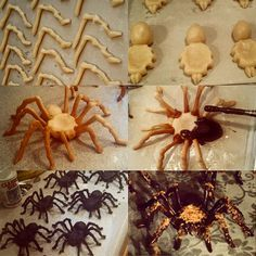 I made tarantula girl scout cookies... Lots of them ':/ - Imgur