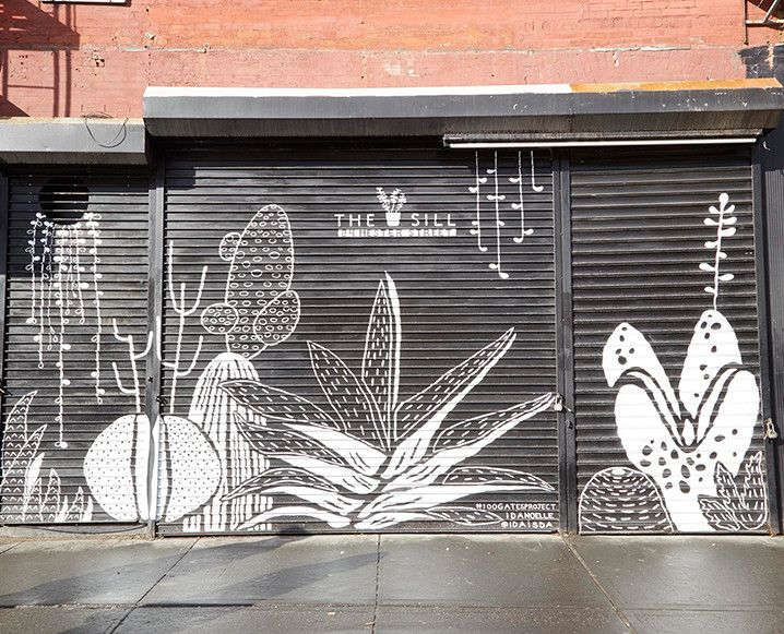 Please Send Plants: Inside This Cute New NYC Plant Delivery Service - The Chalkboard
