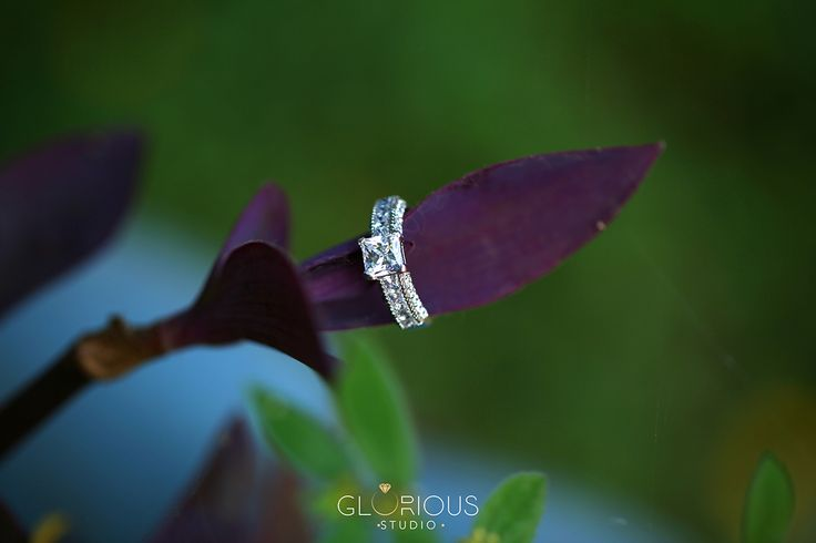 There is something so very romantic about a small, intimate wedding. And this photo shoot captured by The Glorious Studio   jewellery photoshoot in #surat #diamondjewellery #jewellery #photography #india #surat #best #macrophotography #jewelleryshoot #jewellerydesigns #jewellers #gujarat #mumbai  #productshoot #productphotography #highlevelphotography #advertisement #naturephotography #outdoorjewelleryphotography