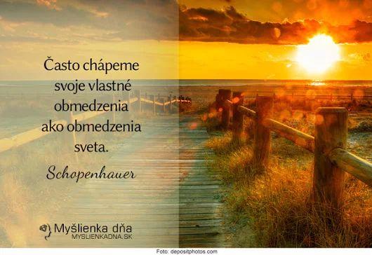 Často chápeme vlastné obmedzenia ako obmedzenia sveta   -- Schopenhauer