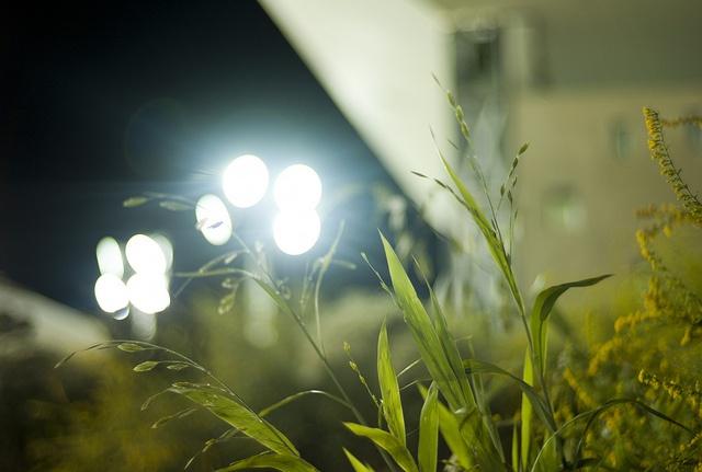 Landscaping in 9/18 by ENJOY House - Team NJ, Solar Decathlon 2011, via Flickr