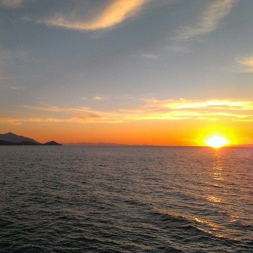 """""""Saraghi al tramonto"""". Il racconto più bello di ogni pescatore (sunset)"""