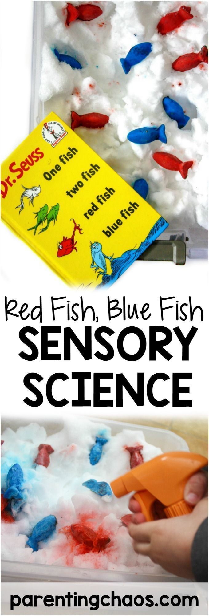 Kids will love this Red Fish, Blue Fish Sensory Science Bin inspired by Dr. Seuss's book One Fish Two Fish Red Fish Blue Fish!