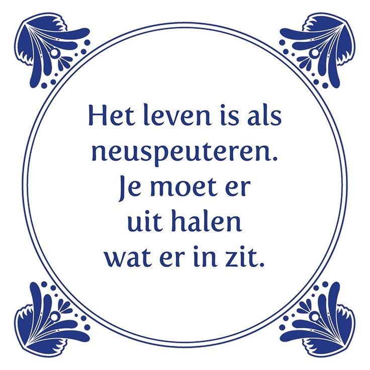 Tegeltjeswijsheid.nl - een uniek presentje - Het leven is als neuspeuteren
