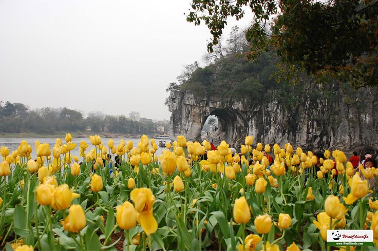 guilin tour, Travel Guide www.westchinago.com info@westchinago.com