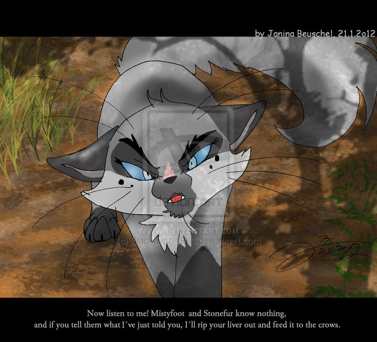 Warriors Forest Of Secrets Lexile: Graypools Warning By JB-Pawstep