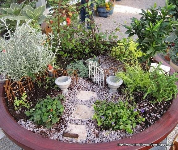 162 best images about mini container gardens on pinterest for Indoor mini garden ideas