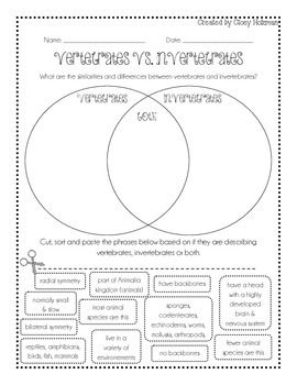 In this venn diagram, students cut, sort and paste various descriptions and examples of vertebrates and invertebrates to discover the similarities and differences between the two types of animals.Answer Key Included