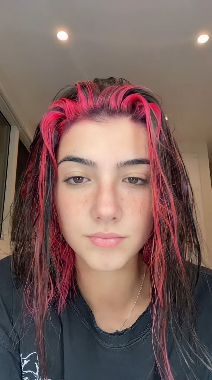 Pin By Maah On Charli D In 2020 Hair Styles Hair Highlights Pink Hair