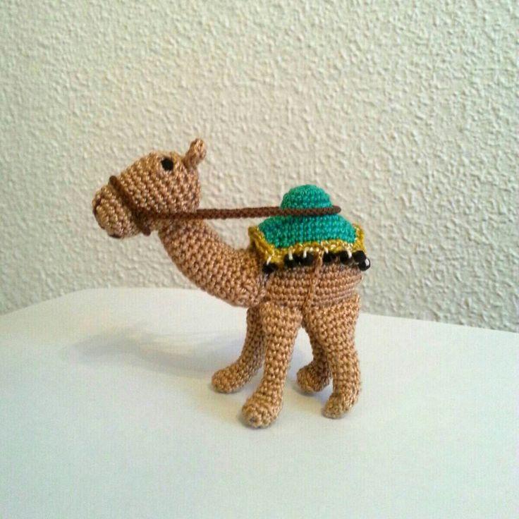 camello belen