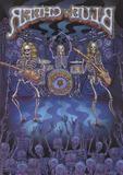 Blue Cheer Rocks Europe [DVD] [English] [2009]