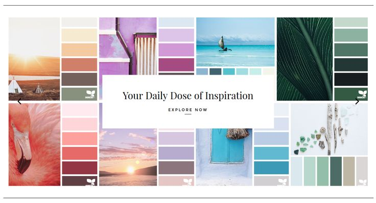 ...for all who love color.