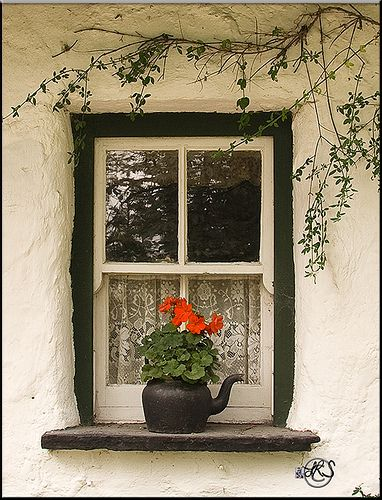 a little window with a teakettle flower pot...simply lovely