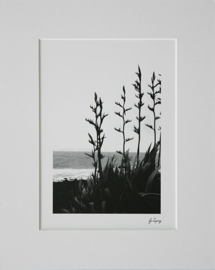 flax silhouette - Google Search
