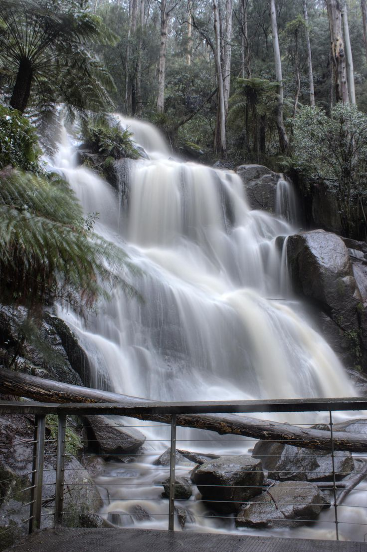 Toorongo Falls, Noojee, Victoria