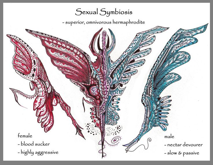 Sexual symbiosis by MickMcDee.deviantart.com on @DeviantArt