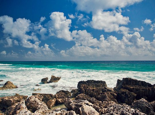 See the sea in Cozumel. #mexico #caribbean #cruiseCaribbean Cruise