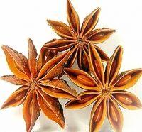 Anis Estrelado - Disponível em www.estadoliquido.pt