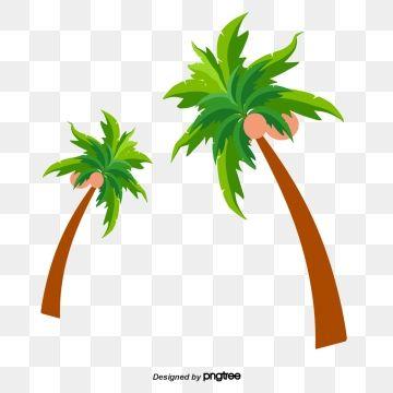 coconut clipart,tree clipart,vector diagram,coconut tree,ripe coconut,green  coconut,brown trunk,leaf,summer,green vector,coconut vector,tree  vector,green