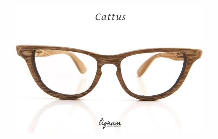 Cattus Frames 2