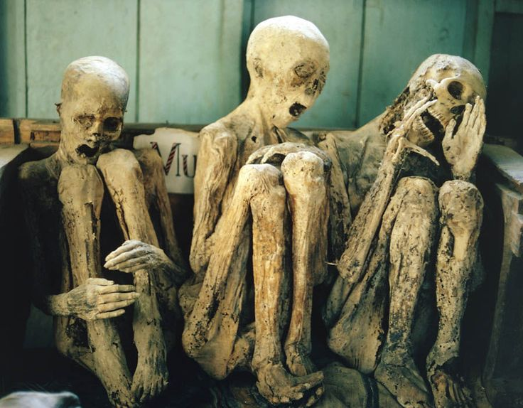 Three Mummies from the caves in Kabayan cliffs, Province of Ifugao, Philippines.