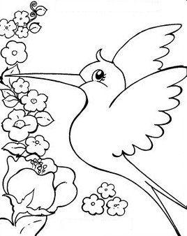 Desenhos Para Colorir Estação Primavera, Pássaros, Flores, Paisagem   Ano 2013