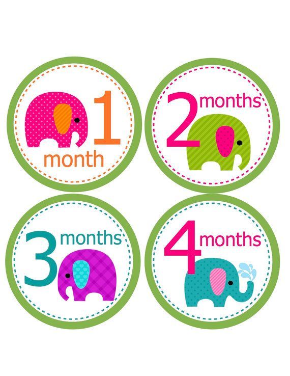 Monthly Onesie Stickers for Baby Girl...Bright Mod Elephants...Favorite baby shower gift for New Moms... Great Photo Prop. $9.00, via Etsy.