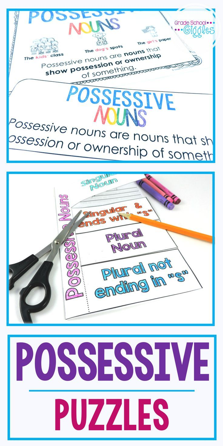 hight resolution of Possessive Nouns Worksheets and Centers   Possessive nouns