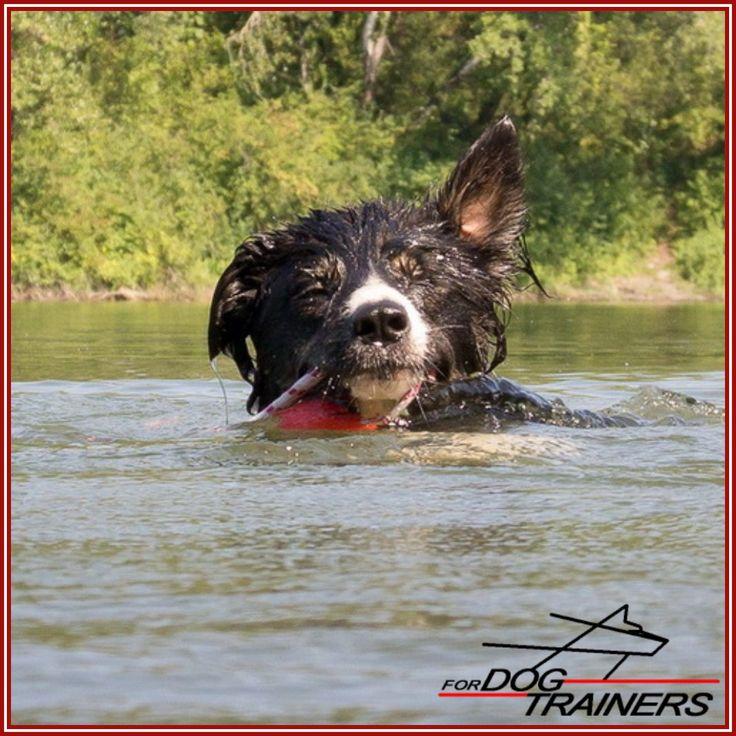 Pływająca piłka na sznurku ForDogTrainers - zabawka dla psa