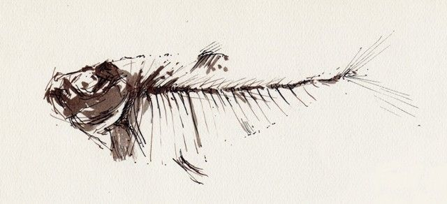 Fossil Fish sketch - Ink and Wash