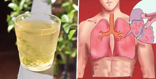 Il tè che elimina tutto il catarro nei polmoni, disintossica le vie respiratorie e cura l'asma