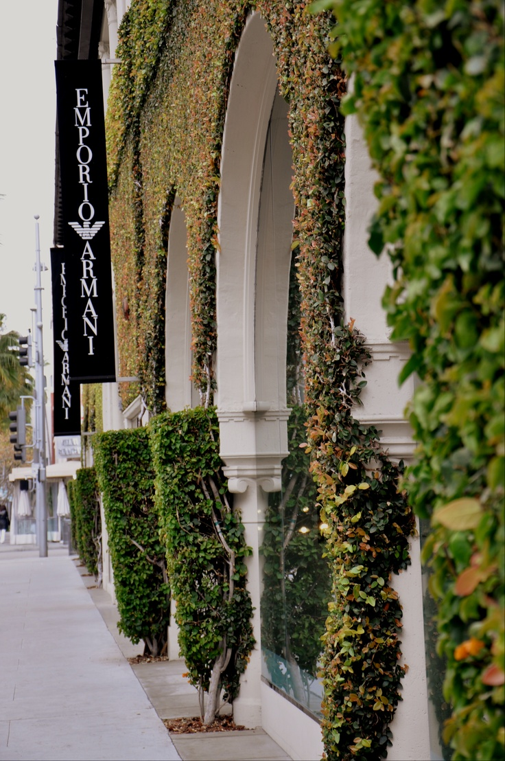 17 Best Images About Rodeo Drive On Pinterest