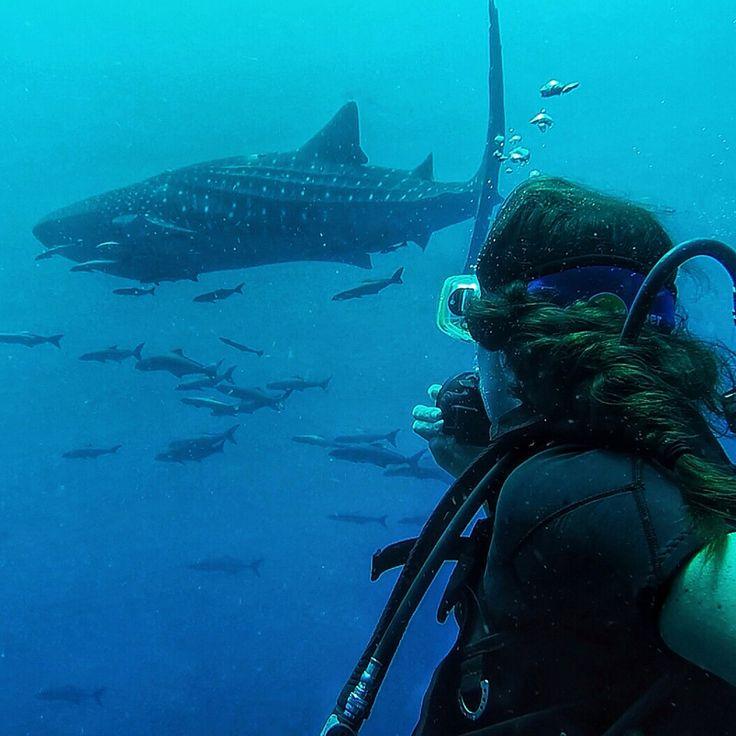 Scuba diving in Koh Lanta, Thailand.