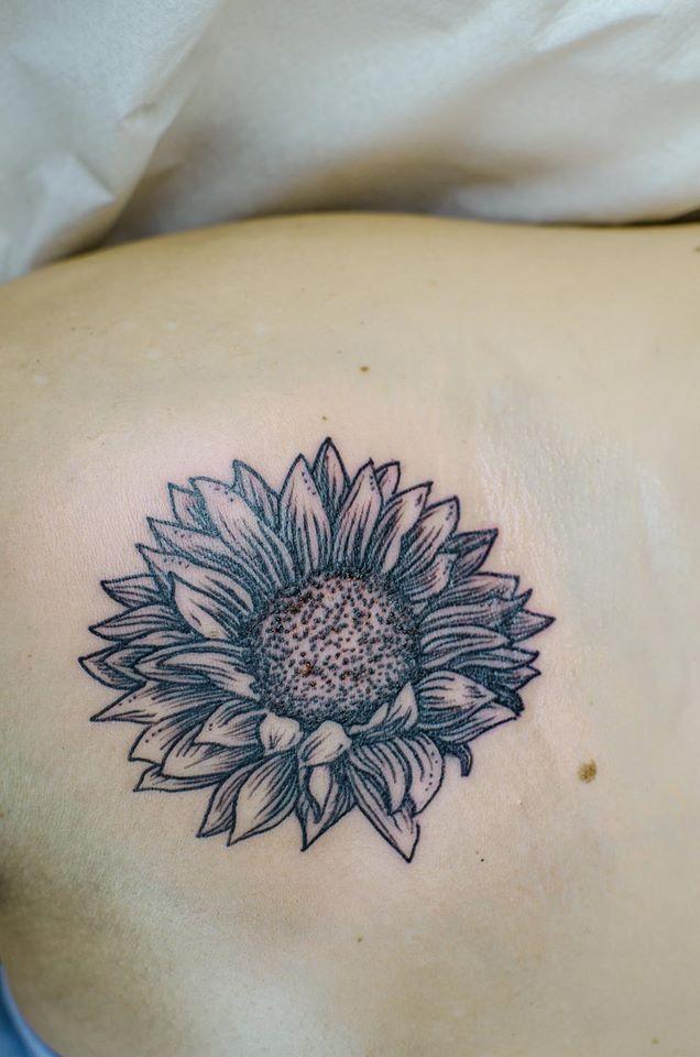 sunflower by ficek-art.deviantart.com on @DeviantArt